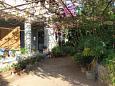 Courtyard - Apartments Mirca (Brač) - 2843