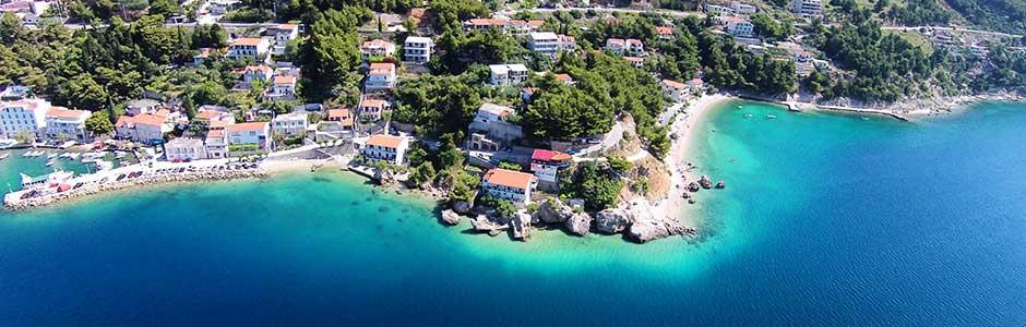 Mimice Croatia