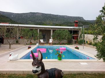 Property Bol (Brač) - Accommodation 11016 - Vacation Rentals with pebble beach.