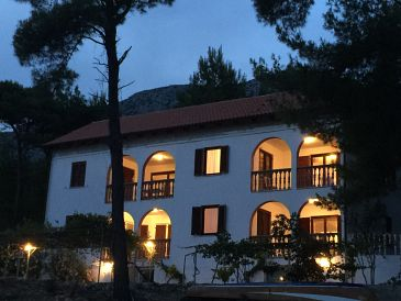 Property Ivan Dolac (Hvar) - Accommodation 11308 - Apartments near sea with pebble beach.