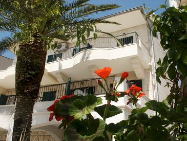 Property Podgora (Makarska) - Accommodation 11335 - Apartments near sea with pebble beach.