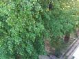 Split, Balkon - Ausblick in folgender Unterkunftsart apartment, WIFI.