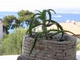Courtyard Postira (Brač) - Accommodation 11494 - Apartments with pebble beach.