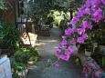 Courtyard Sevid (Trogir) - Accommodation 11542 - Vacation Rentals near sea.
