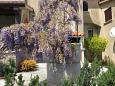 Courtyard Presika (Labin) - Accommodation 11656 - Apartments with pebble beach.