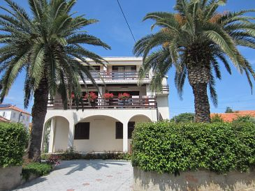 Property Zadar - Diklo (Zadar) - Accommodation 11662 - Apartments near sea.