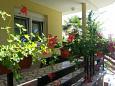Terrace - Apartment A-11704-a - Apartments Zadar (Zadar) - 11704