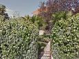 Courtyard Seget Vranjica (Trogir) - Accommodation 11719 - Apartments in Croatia.