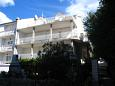 Apartments Slano (Dubrovnik) - 12576