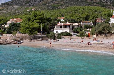 Property Ivan Dolac (Hvar) - Accommodation 130 - Apartments near sea with pebble beach.