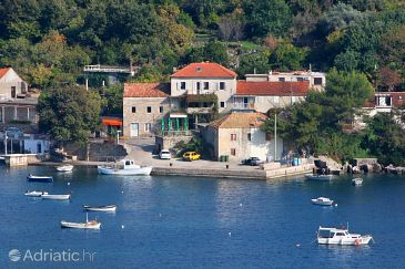 Property Molunat (Dubrovnik) - Accommodation 2139 - Apartments and Rooms near sea with sandy beach.