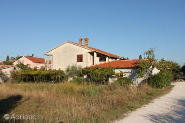 Property Fažana (Fažana) - Accommodation 2293 - Apartments with pebble beach.