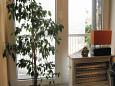 Dining room - Studio flat AS-2382-b - Apartments Novi Vinodolski (Novi Vinodolski) - 2382