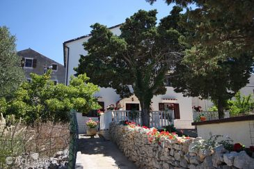 Property Ćunski (Lošinj) - Accommodation 2498 - Apartments and Rooms with pebble beach.