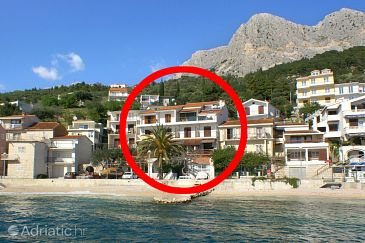 Property Podgora (Makarska) - Accommodation 2573 - Apartments near sea with pebble beach.