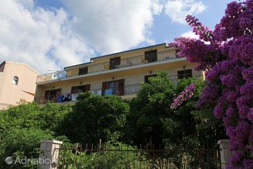 Property Podgora (Makarska) - Accommodation 2595 - Apartments with pebble beach.