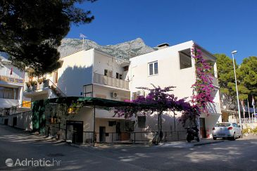 Property Makarska (Makarska) - Accommodation 2600 - Apartments near sea with pebble beach.