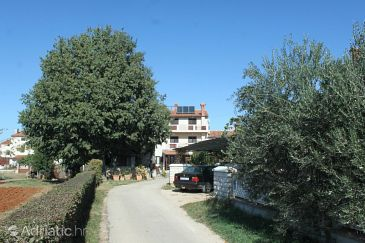 Property Valbandon (Fažana) - Accommodation 3021 - Apartments and Rooms with pebble beach.