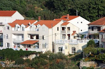Property Cavtat (Dubrovnik) - Accommodation 3175 - Apartments with pebble beach.