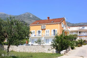 Property Slano (Dubrovnik) - Accommodation 3184 - Apartments with pebble beach.