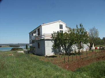 Property Mrljane (Pašman) - Accommodation 327 - Apartments and Rooms near sea.