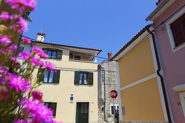 Property Novigrad (Novigrad) - Accommodation 3365 - Vacation Rentals near sea.