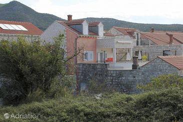 Property Slano (Dubrovnik) - Accommodation 3543 - Apartments and Rooms near sea with pebble beach.