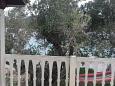 Terrace - view - House K-399 - Vacation Rentals Krknata (Dugi otok - Krknata) - 399