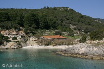 Property Uvala Rasohatica (Korčula) - Accommodation 4386 - Apartments near sea with pebble beach.
