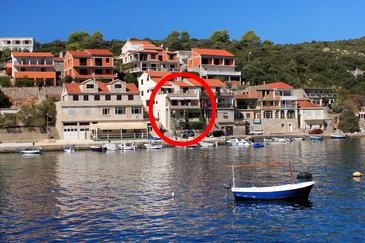 Obiekt Zavalatica (Korčula) - Zakwaterowanie 4419 - Apartamenty blisko morza.