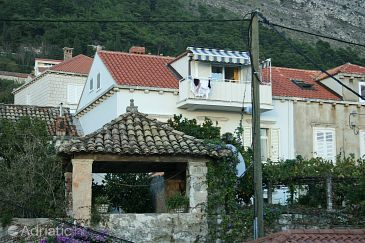Property Dubrovnik (Dubrovnik) - Accommodation 4753 - Apartments with pebble beach.