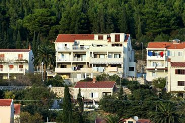 Property Dubrovnik (Dubrovnik) - Accommodation 4768 - Apartments with pebble beach.