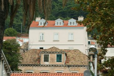 Property Dubrovnik (Dubrovnik) - Accommodation 4771 - Apartments with pebble beach.