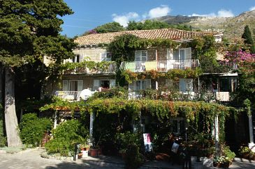 Property Mlini (Dubrovnik) - Accommodation 4780 - Apartments and Rooms near sea with pebble beach.