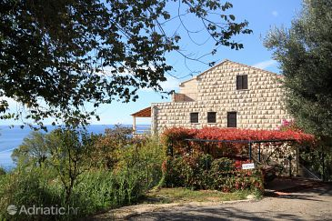 Property Plat (Dubrovnik) - Accommodation 4792 - Apartments with pebble beach.