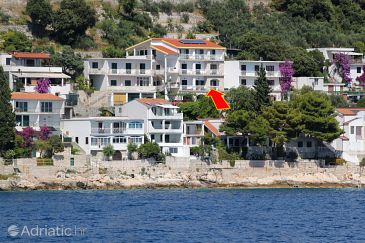 Property Drvenik Gornja vala (Makarska) - Accommodation 4890 - Apartments with pebble beach.