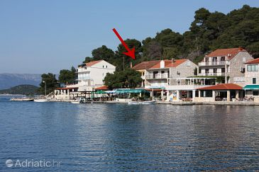 Property Pomena (Mljet) - Accommodation 4916 - Rooms near sea with rocky beach.