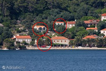 Property Babine Kuće (Mljet) - Accommodation 4927 - Apartments near sea with rocky beach.
