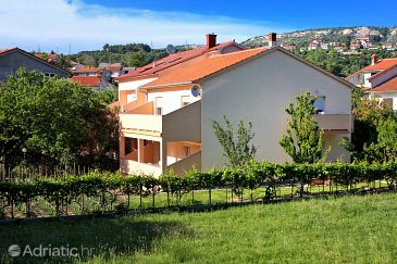 Property Palit (Rab) - Accommodation 5006 - Rooms in Croatia.