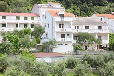 Property Kampor (Rab) - Accommodation 5012 - Apartments and Rooms near sea.