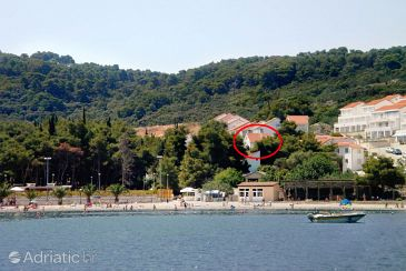 Property Nečujam (Šolta) - Accommodation 5173 - Apartments near sea with pebble beach.