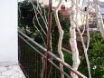 Balkon - Apartament A-5199-b - Apartamenty Poljica (Trogir) - 5199
