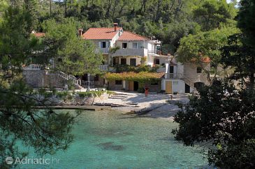 Property Uvala Lozna (Hvar) - Accommodation 5685 - Apartments and Rooms near sea with pebble beach.