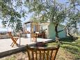 Property Zemunik Gornji (Zadar) - Accommodation 5873 - Vacation Rentals with pebble beach.