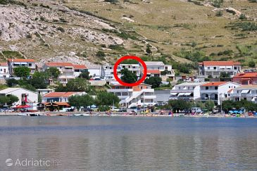 Property Metajna (Pag) - Accommodation 6423 - Apartments with sandy beach.