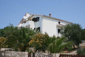 Property Mandre (Pag) - Accommodation 6546 - Apartments in Croatia.