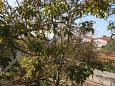 Balcony - view - Room S-6634-b - Apartments and Rooms Starigrad (Paklenica) - 6634