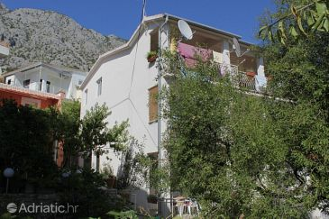 Property Živogošće - Porat (Makarska) - Accommodation 6807 - Apartments near sea with pebble beach.