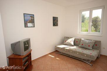 Apartment A-7017-c - Apartments Novigrad (Novigrad) - 7017