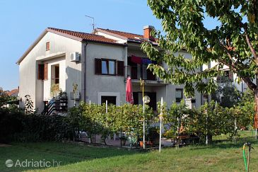 Property Umag (Umag) - Accommodation 7109 - Apartments with sandy beach.